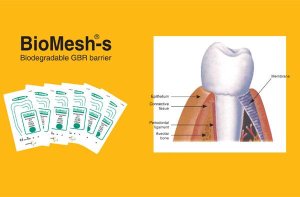 Biomesh Leaflet